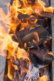Φλόγες της πυρκαγιάς ως υπόβαθρο Στοκ Εικόνα