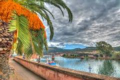 Φοίνικας από Temo τον ποταμό, Σαρδηνία Στοκ φωτογραφία με δικαίωμα ελεύθερης χρήσης