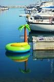 Φοίνικας διογκώσιμος Στοκ εικόνα με δικαίωμα ελεύθερης χρήσης