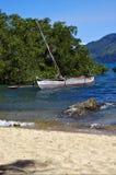 Φοίνικας και ακτή βαρκών κλάδων της Μαδαγασκάρης Στοκ φωτογραφία με δικαίωμα ελεύθερης χρήσης