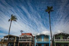 Φοίνικας και beachfront σπίτια στο Newport Beach στοκ φωτογραφία με δικαίωμα ελεύθερης χρήσης