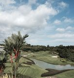 Φοίνικας κραγιόν που αγνοεί ένα γήπεδο του γκολφ Στοκ φωτογραφία με δικαίωμα ελεύθερης χρήσης