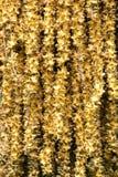 φοίνικας λουλουδιών Στοκ εικόνα με δικαίωμα ελεύθερης χρήσης