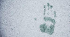 Φοίνικας στη σύσταση χειμερινού γυαλιού Στοκ εικόνες με δικαίωμα ελεύθερης χρήσης