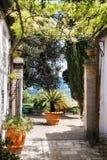 Φοίνικας στο ιταλικό προαύλιο r στοκ φωτογραφία με δικαίωμα ελεύθερης χρήσης