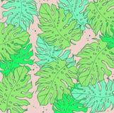 φοίνικας φύλλων τροπικός Υπόβαθρο σχεδίου ζουγκλών ή πρότυπο αφισών Διανυσματικά χαραγμένα απεικόνιση φύλλα ζουγκλών ζωηρόχρωμος ελεύθερη απεικόνιση δικαιώματος