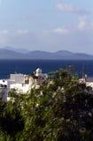 φοίνικας Lanzarote Μοντάνα baja Στοκ Εικόνα
