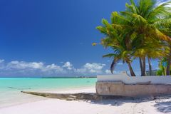 Φοίνικες και άσπρη παραλία άμμου στοκ φωτογραφία με δικαίωμα ελεύθερης χρήσης