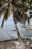 Φοίνικες και αποβάθρα 2 των Florida Keys Στοκ Εικόνες