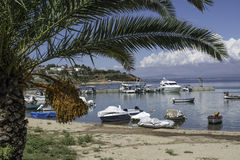 Φοίνικες και βάρκες Στοκ Φωτογραφίες