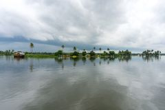 Φοίνικες και νεφελώδεις ουρανοί στα τέλματα του Κεράλα στοκ εικόνες