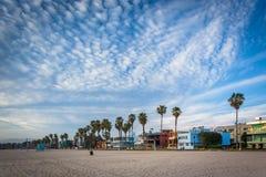 Φοίνικες και σπίτια κατά μήκος της παραλίας, στην παραλία της Βενετίας, Los Ange Στοκ φωτογραφίες με δικαίωμα ελεύθερης χρήσης