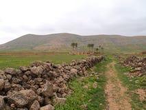 Φοίνικες καταστροφών και ένα ίχνος σε ένα αγροτικό τοπίο στοκ εικόνα