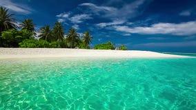 Φοίνικες πέρα από την τροπική λιμνοθάλασσα με την άσπρη παραλία
