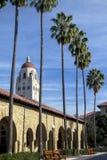 Φοίνικες πανεπιστημιουπόλεων - Πανεπιστήμιο του Stanford Στοκ φωτογραφία με δικαίωμα ελεύθερης χρήσης
