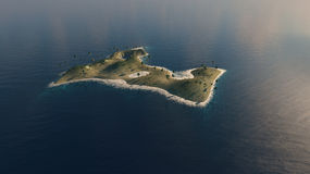 Φοίνικες σε ένα νησί Στοκ Εικόνες