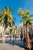 Φοίνικες σε Plaza Reial στη Βαρκελώνη Στοκ Εικόνα