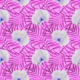 Φοίνικες φύλλων με το άνευ ραφής ροζ σχεδίων ορχιδεών διανυσματική απεικόνιση
