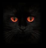 Φοβερό ρύγχος μιας μαύρης γάτας με τα κόκκινα μάτια στοκ φωτογραφίες