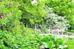 Φοβιτσιάρη έπιπλα κήπων μετάλλων Στοκ Φωτογραφία