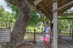Φονικοί τομείς, Καμπότζη Στοκ Εικόνες