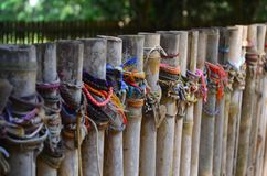 Φονικός μαζικός τάφος τομέων, Καμπότζη Στοκ Φωτογραφία