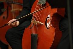 Φορέας βιολοντσέλων Συνθέτης, μουσική Πορτρέτο της παίζοντας κλασικής μουσικής βιολοντσελιστών στο βιολοντσέλο στο μαύρο υπόβαθρο στοκ φωτογραφία με δικαίωμα ελεύθερης χρήσης