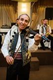 Φορέας βιολιών Στοκ φωτογραφίες με δικαίωμα ελεύθερης χρήσης