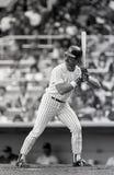 Φορέστε Mattingly, New York Yankees στοκ εικόνα με δικαίωμα ελεύθερης χρήσης