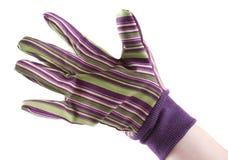 φορημένο γάντια χέρι Στοκ εικόνα με δικαίωμα ελεύθερης χρήσης