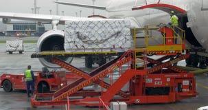 Φορτίο φόρτωσης στη λαβή αποσκευών αεροπλάνων απόθεμα βίντεο