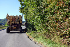 Φορτηγά ξυλείας σε έναν δρόμο βουνών Στοκ εικόνες με δικαίωμα ελεύθερης χρήσης