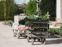 Φορτηγό κηπουρών στα trassporting λουλούδια πάρκων Στοκ φωτογραφία με δικαίωμα ελεύθερης χρήσης