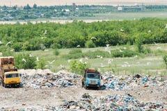 Φορτηγό που λειτουργεί στα υλικά οδόστρωσης με τα πουλιά που ψάχνουν τα τρόφιμα Απορρίματα στην απόρριψη πόλεων Εδαφολογική ρύπαν Στοκ εικόνες με δικαίωμα ελεύθερης χρήσης