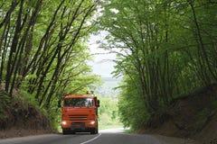 Φορτηγό στο δασικό δρόμο στοκ φωτογραφία με δικαίωμα ελεύθερης χρήσης