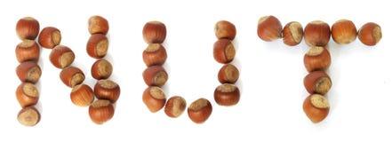 φουντούκια που γίνονται τη λέξη καρυδιών Στοκ Φωτογραφία