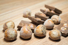 Φουντούκι και σοκολάτα 9 Στοκ εικόνες με δικαίωμα ελεύθερης χρήσης