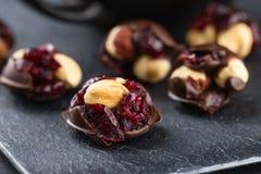 Φουντούκι και τα βακκίνια στη σοκολάτα Στοκ Φωτογραφία