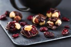 Φουντούκι και τα βακκίνια στη σοκολάτα Στοκ Εικόνες