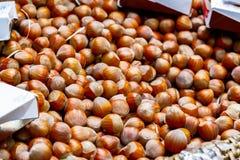 Φουντούκι στην επίδειξη στην αγορά δήμων Στοκ εικόνες με δικαίωμα ελεύθερης χρήσης