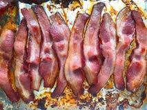 Φούρνος-μαγειρευμένο μπέϊκον Στοκ φωτογραφίες με δικαίωμα ελεύθερης χρήσης