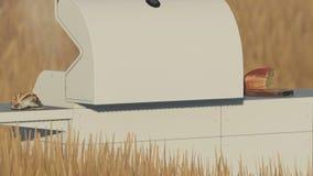 Φούρνος πέρα από τον ξηρό απότομο βράχο χλόης με το φρέσκο ψωμί από τον κηφήνα στην ημέρα φιλμ μικρού μήκους