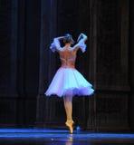 Φούστα μπαλέτου Στοκ εικόνα με δικαίωμα ελεύθερης χρήσης