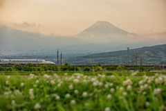 Φούτζι και Tokaido Shinkansen, Σιζουόκα, Ιαπωνία στοκ φωτογραφία με δικαίωμα ελεύθερης χρήσης