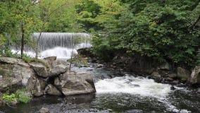 Φράγμα και ορμητικά σημεία ποταμού μύλων στον ποταμό Yamaska σε Granby, Κεμπέκ απόθεμα βίντεο