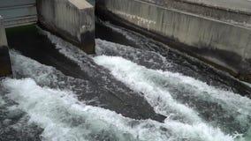 Φράγμα ποταμών - ρέοντας και καταβρέχοντας νερό στον κρύο ποταμό απόθεμα βίντεο