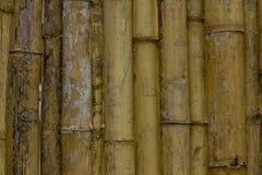 Φράκτες φιαγμένοι από διάφορα κομμάτια του μπαμπού που συνδέεται στοκ φωτογραφία
