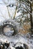 Φράκτης αλυσίδα-συνδέσεων στο δάσος στοκ εικόνες με δικαίωμα ελεύθερης χρήσης