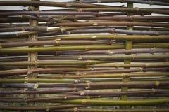 Φράκτης από τους ξύλινους κλάδους Στοκ Εικόνες