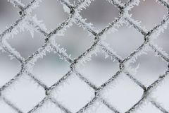 Φράκτης δικτυωτού πλέγματος που καλύπτεται με τη μακροεντολή hoarfrost Κινηματογράφηση σε πρώτο πλάνο σχεδίων στοκ εικόνα με δικαίωμα ελεύθερης χρήσης